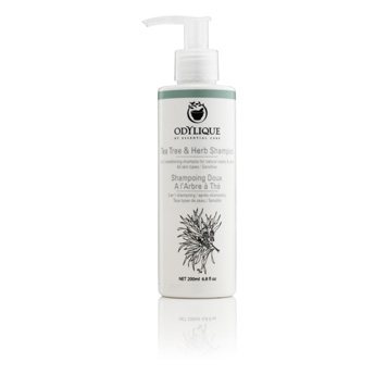 odylique tea tree & herb shampoo