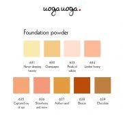 Foundation powders_palette