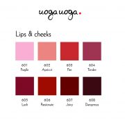 Lip & cheeks palette